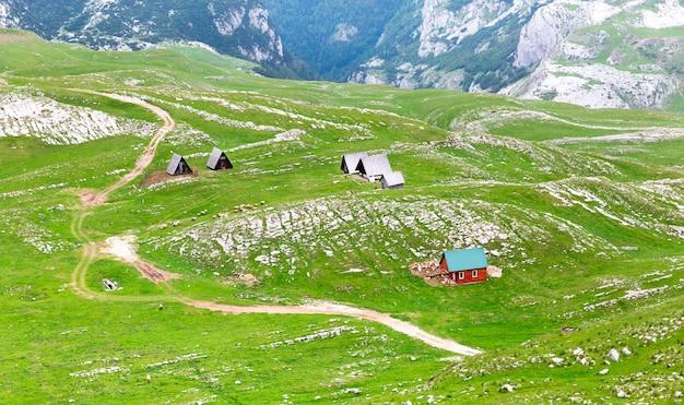 モンテネグロの山と緑の風景