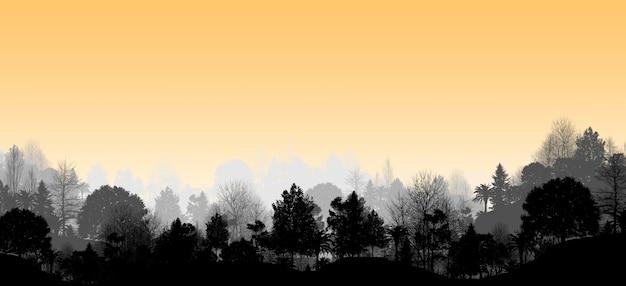Панорамный вид на горы и деревья, горы в тумане с видом на лес