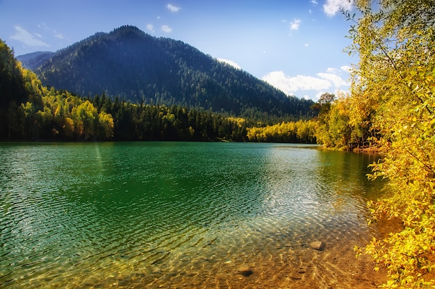 Mountain autumn green siberia lake with reflection