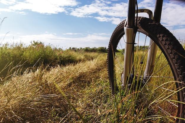 비포장 도로에 화창한 날에 산악 자전거
