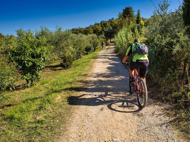 オリーブの溝の隣の田舎道に乗るマウンテンバイクサイクリスト