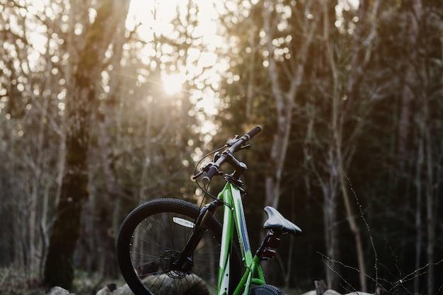 日没時の森のマウンテンバイク。スポーツと旅行のコンセプト