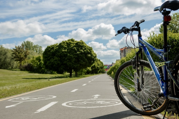 Mountain bike stands in park on bicycle path