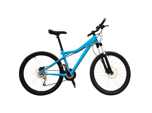 Mountain bike with disc brakes and triangle blue frame.