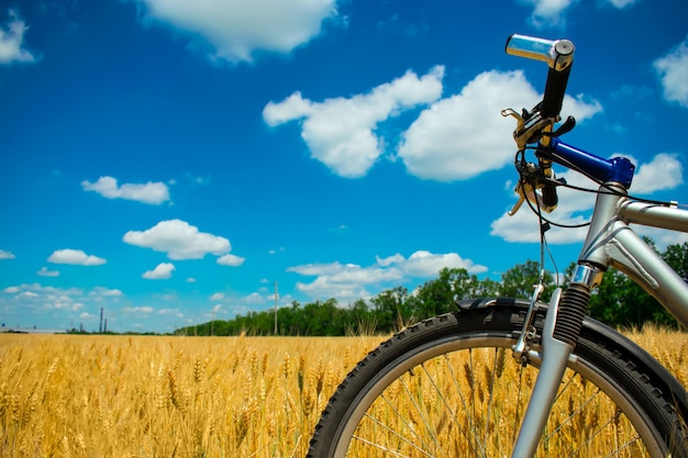 Mountain bike on yellow wheat field under blue sky with clouds