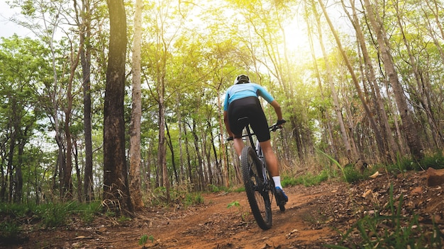 Mountain biker cyclists training in the forest