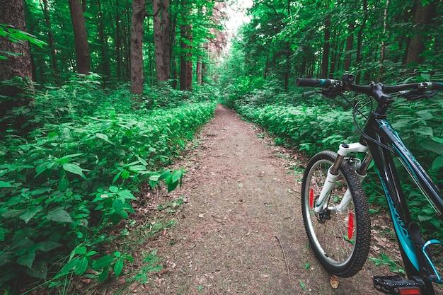 Mountain biking down hill descending fast on bicycle Premium Photo