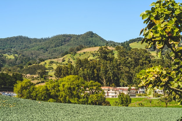 Mountain, blue sky in cartago costa rica