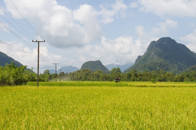 The mountain and cornfield with blue sky in vang vieng, laos