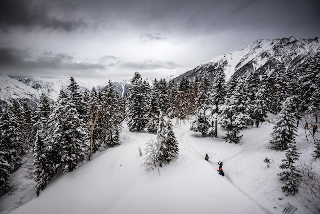 Montagna coperta di pini e neve sotto un cielo nuvoloso