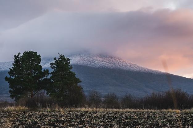 日没時に雪と曇り空で覆われた山