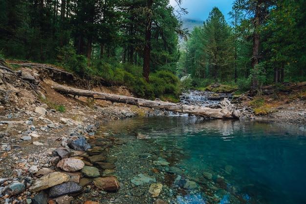 Mountain creek flows into turquoise lake