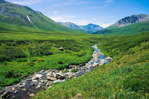 Mountain creek in green valley among rich vegetation of highland in sunny day