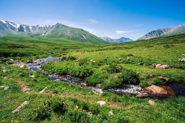Горный ручей в зеленой долине среди богатой растительности горной местности в солнечный день. большой валун в быстрой воде от ледника под голубым ясным небом. гигантские горы со снегом. яркий пейзаж алтайской природы.