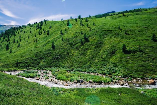 Горный ручей в зеленой долине среди богатой растительности горной местности в солнечный день. быстрый поток воды из ледника под голубым ясным небом. гигантские снежные горы за холмом. яркий пейзаж величественной природы.