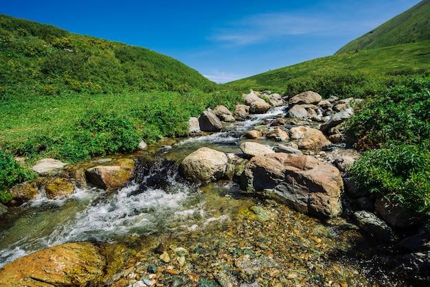 Заводь горы с большими валунами в солнечной зеленой долине около холмов под голубым небом. чистый поток воды в быстрый ручей на солнце. удивительный ландшафт алтайской природы.