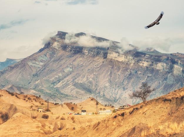 거 대 한 산 근처에 마을과 산악 사막 풍경.