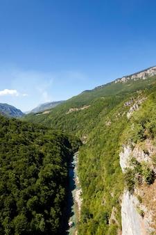 山岳地帯-さまざまな木や他の植物で覆われた山々。