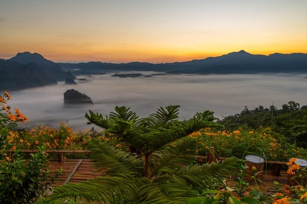 Mountain and flower views of phu langka national park,  thailand