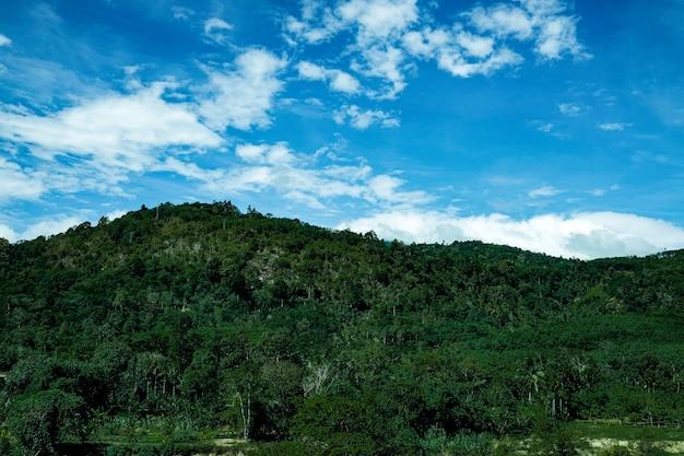 Гора зеленый холм хребет облака панорамный пейзаж
