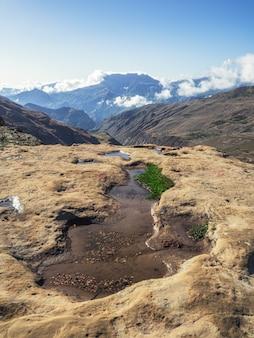 Поход в горы. вид на небольшую горную лужицу, служащую ленивым стадом коров. вертикальный вид.