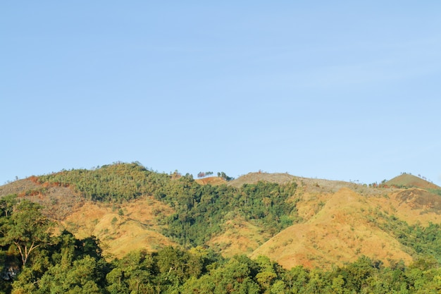 Гора в ачехе