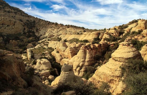 ヨルダンのダナ生物圏保護区の山