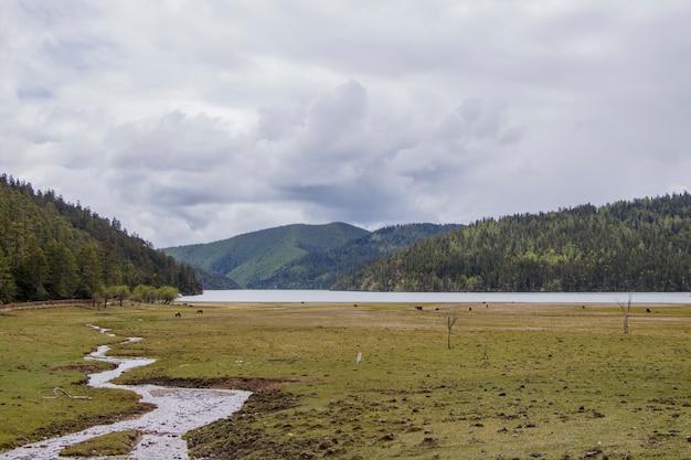 Mountain lake curve