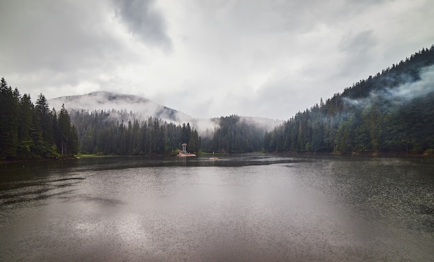Mountain lake synevir in the rainy foggy summer day in carpathian, ukraine.  beautiful nature scenery outdoors. coniferous forest with tall trees on the shore