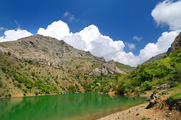 Горное озеро с ярко-зеленой водой, большой камень на переднем плане на берегу. зеленые деревья и растения в фоновом режиме