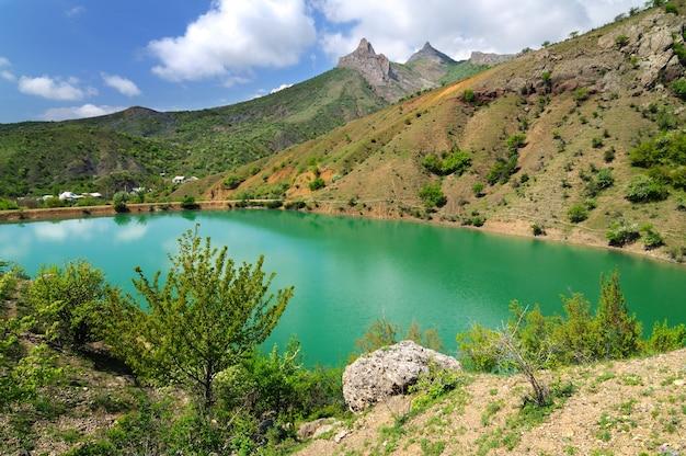 밝은 녹색 물이 있는 산 호수, 해안 녹색 나무와 식물의 전경에 있는 큰 돌