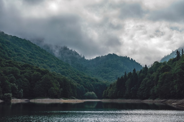 Mountain lake with forest in fog
