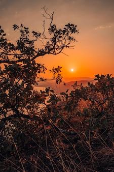 Горный пейзаж на закате, сфотографированный сквозь ветви деревьев