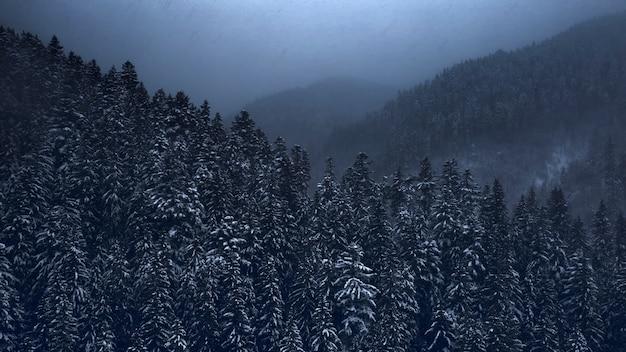 Горный пейзаж, метель над хвойным лесом. вид с дрона.
