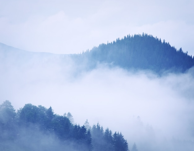 Горный пейзаж. композиция природы.