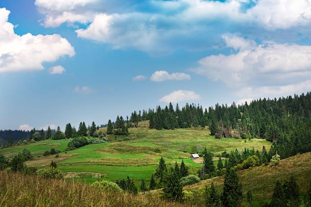 Горный пейзаж. ферма в горах, пастбище и земля под посевы. ранняя осень, хвойный лес.
