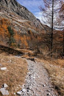 晴れた秋の日の北イタリアの山の風景