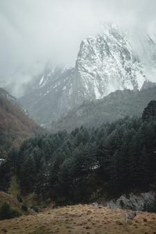 Горный пейзаж зимой