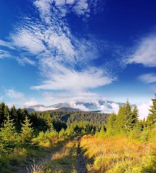 Mountain landscape on a sunny morning. the road runs along the ridge