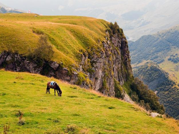 Горный пейзаж с пасущимися лошадьми, осенняя грузия, казбеги