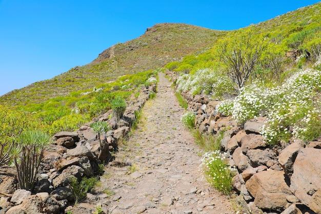 ハイキングコースのある山の風景