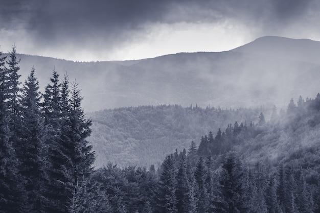 山の濃い霧の山の風景