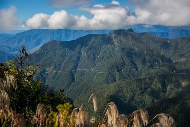 Yungas, 안데스, 볼리비아의 산 풍경