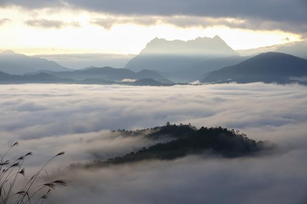 山の朝 Premium写真