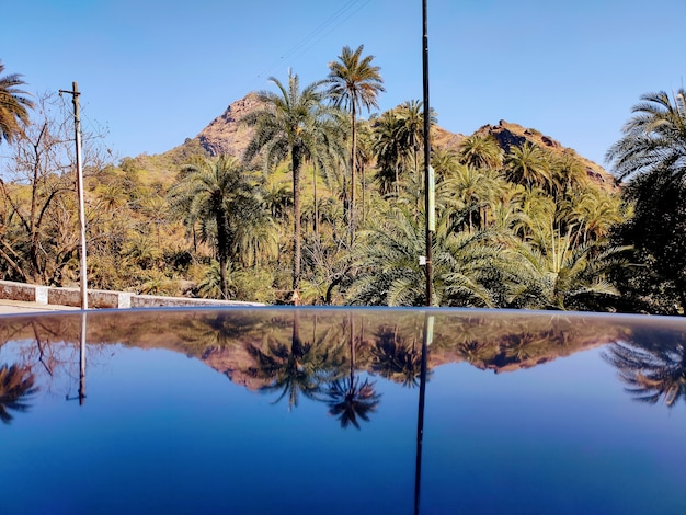 Mountain and palm trees reflection on the baleno car bonnet mount abu road gujarat india