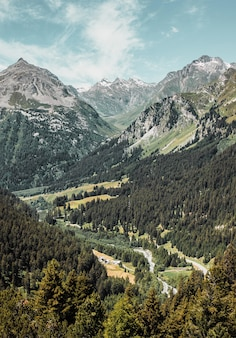 谷と緑の森のパノラマ風景に囲まれたスイスアルプス道路の峠
