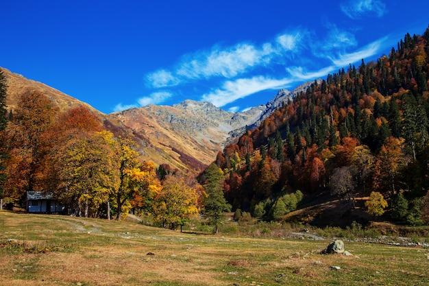 Mountain pass pyv in abkhazia. magnificent autumn landscape. alpine meadows. auadhara.