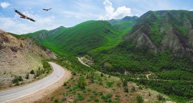 緑豊かな山々に囲まれた曲がりくねった山道。ダゲスタン。全景。