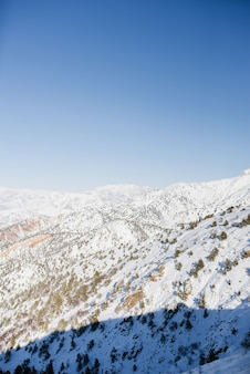 晴れた日にウズベキスタンで雪に覆われた山頂