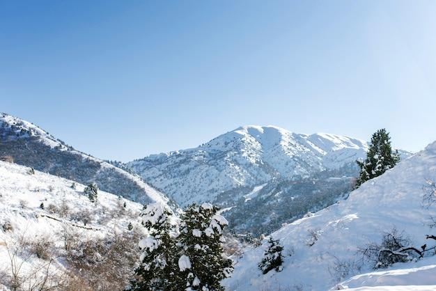 Горные вершины тянь-шаня засыпаны снегом. курорт бельдерсай зимой в ясный солнечный день